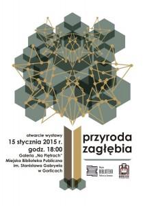 przyroda_zaglebia_plakat-1