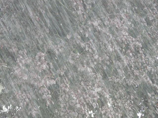 burza deszcz