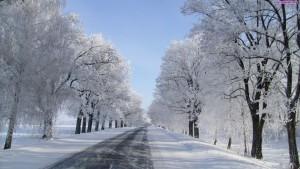 snieg_droga